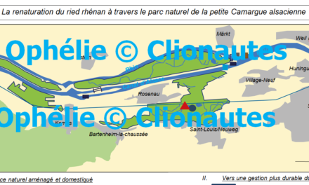 Image illustrant l'article camargue alsa de Clio Carto