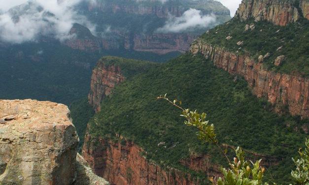 L'Afrique australe : un espace en profonde mutation ?